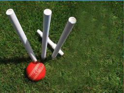 A simple cricket set to play in your backyard
