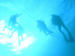 Learn to scuba dive in a registered diving centre.