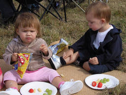 Outdoor Picnics can be relaxing and fun at the same time.