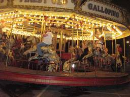 The Gallopers carousel is a popular kids attraction in the Royal Tasmanian Botanical Gardens.