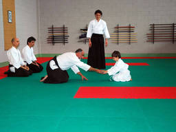 A kid learning aikido postures