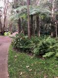 $50 discount on Weekend Well-being Retreats Nelson Bay Health & Fitness School Holiday Activities 2 _small