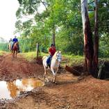 Summer Horse Riding Camps for Kids Beenaam Valley Horse Riding School Holiday Activities 1