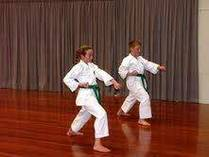 Free Introductory Classes. Mount Beauty Karate Coaches & Instructors 3