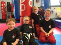 2 Free Intro Lessons + Official Club Training T-Shirt Kemps Creek Karate Classes & Lessons _small