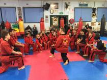 2 Free Intro Lessons + Official Club Training T-Shirt Kemps Creek Karate Classes & Lessons 2 _small