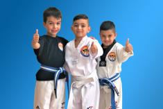 $14.99 - BACK TO SPORT OFFER ( GET YOUR CHILD ACTIVE AGAIN ) Craigieburn Karate Classes & Lessons 2 _small