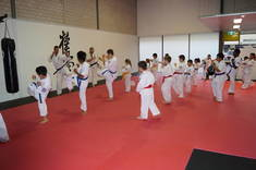 First two lessons FREE Leumeah Karate Classes & Lessons 2