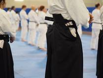 Free Lessons Mandurah Aikido  Classes & Lessons 3
