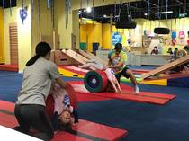 Gymnastics Trial Special Deal Ryde Fitness Classes & Lessons 3