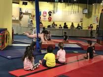 Gymnastics Trial Special Deal Ryde Fitness Classes & Lessons 1