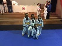 Term 4 - 2 week Free Trial Claremont Meadows Taekwondo Classes & Lessons 4 _small