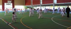 Spring grading Cornubia Taekwondo Schools 3 _small