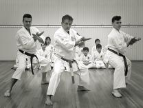WE STILL HAVE FREE MARTIAL ARTS! Wakeley Karate Schools _small
