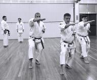 WE STILL HAVE FREE MARTIAL ARTS! Wakeley Karate Schools 3 _small