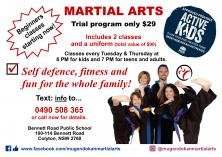 Beginners Trial Program Only $29 Colyton Self Defence Classes & Lessons _small