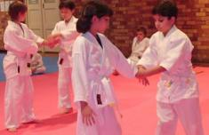 Children's Aikido Class Pymble Aikido  Classes & Lessons _small