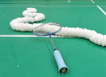 Weekly Social Badminton Sessions Wantirna South Badminton Coaches & Instructors _small