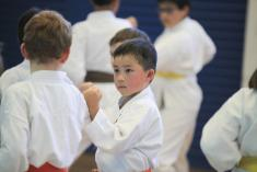 FREE Karate for Kids class Lindfield Karate Classes & Lessons 3 _small