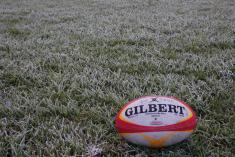 Free rugby ball for new comers Hawthorn Rugby Union Clubs _small