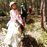 Day camp Cowaramup Pony Riding Classes & Lessons _small