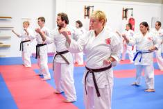 Try Karate Now for Free Ashmore Karate Classes & Lessons _small