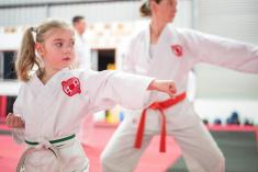 Try Karate Now for Free Ashmore Karate Classes & Lessons 3 _small