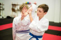 Try Karate Now for Free Ashmore Karate Classes & Lessons 2 _small