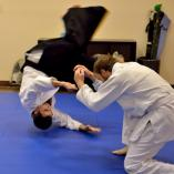 First lesson free Springfield Lakes Aikido  Classes & Lessons _small