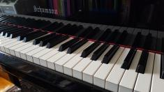New school term. Free first lesson! Mill Park Piano Classes & Lessons _small