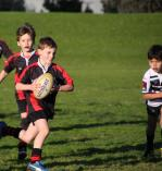Come n Try Tuesdays Hawthorn Rugby Union Clubs 2 _small
