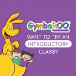 Introductory class to all new babies New Lambton Early Learning Classes & Lessons _small
