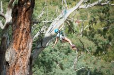 Rock Climb, Abseil and Zipline Experience Piccadilly Adventure _small