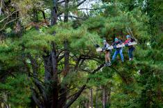 Rock Climb, Zipline and Mega Swing Experience Piccadilly Adventure _small