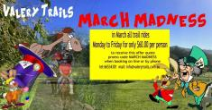 March madness Bellingen Horse Riding Schools _small