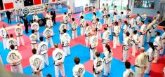 Come and try a Free class Melton Taekwondo Classes & Lessons _small