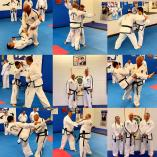 Come and try a Free class Melton Taekwondo Classes & Lessons 3 _small