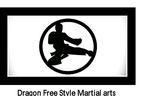 Dragon Freestyle martial arts