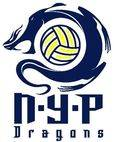NYP dragons water polo club