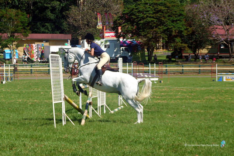 At Horseshoe Park we offer riding lessons for all ages and abilities.