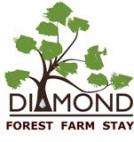 Diamond Forest Farm Stay