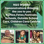 N&S Wildlife Demonstrations Brisbane / Ipswich