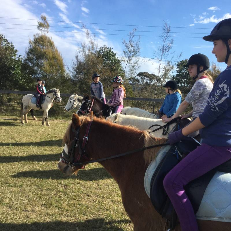 Riders learning some horse riding basics