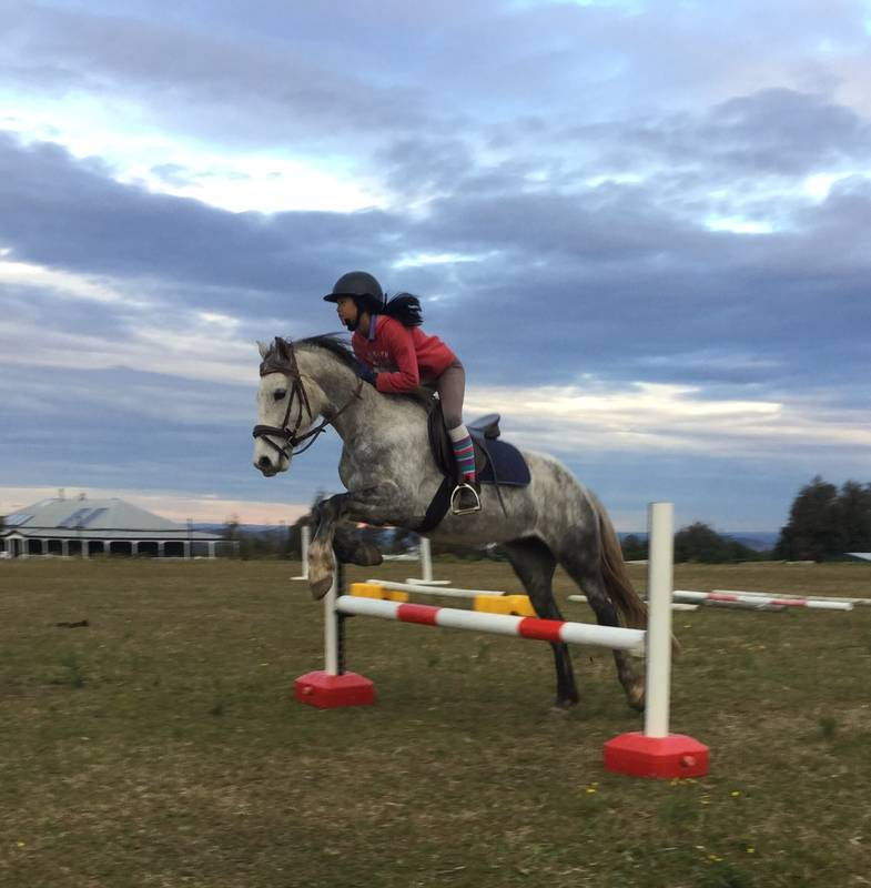 Learning some to showjumping techniques