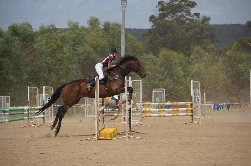 Show Jumping is a popular sport at Benalla Pony Club