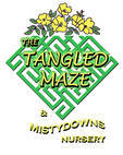 The Tangled Maze