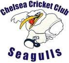 Chelsea Cricket Club