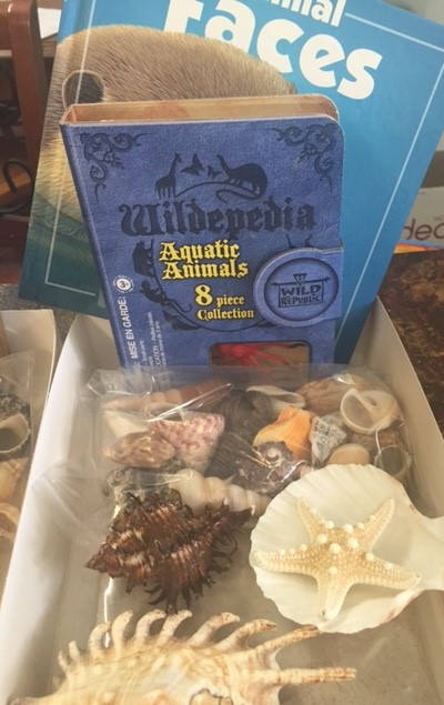 Ocean Discovery Kit