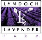 Lyndoch Lavender Farm and Cafe