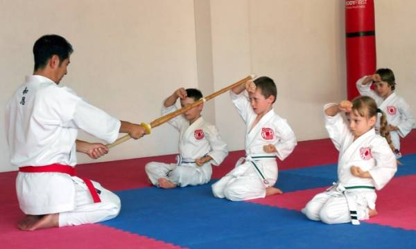Karate Classes for all kids